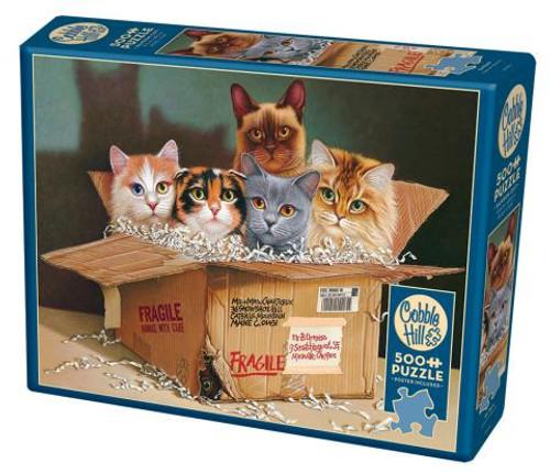 Six Pack 500pc box