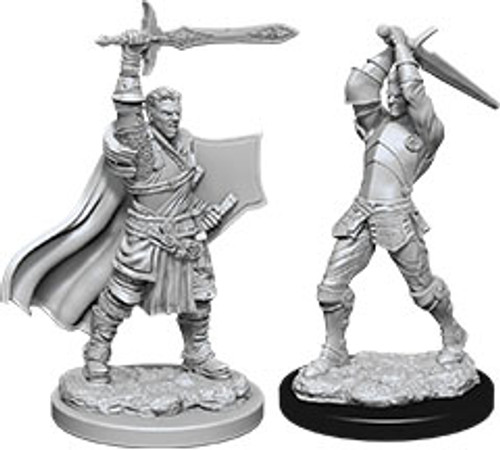 Male Human Paladin W12—D&D Nolzur's Marvelous Miniatures W12