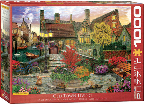 Old Town Living 1000pc