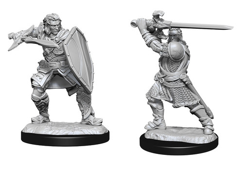 Human Paladin Male W14—D&D Nolzur's Marvelous Miniatures W14