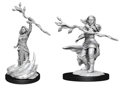 Human Druid Female—D&D Nolzur's Marvelous Miniatures W14