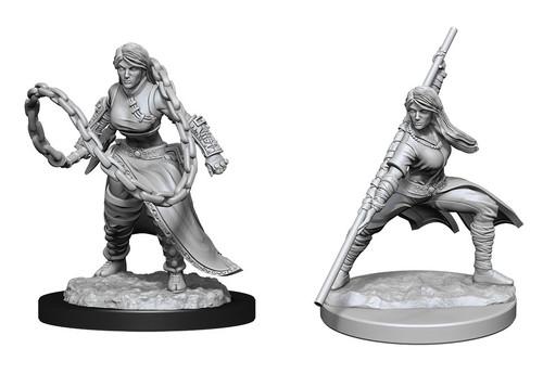 Human Monk  Female—D&D Nolzur's Marvelous Miniatures W14