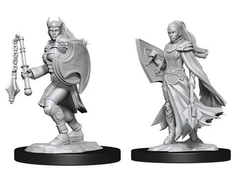 Kalashtar Cleric  Female—D&D Nolzur's Marvelous Miniatures W14