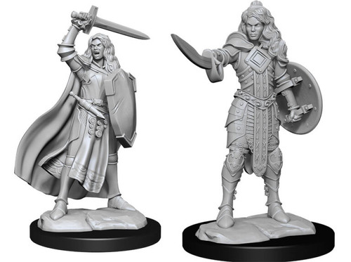 Human Champion Female—Pathfinder Deep Cuts Unpainted Miniatures W14