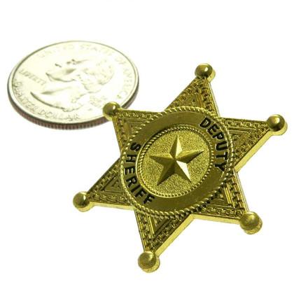 Deputy Sheriff 6 Point Star Mini Badge Lapel Pin