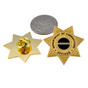 Corrections Officer 7 Point Star Mini Badge Lapel Pin