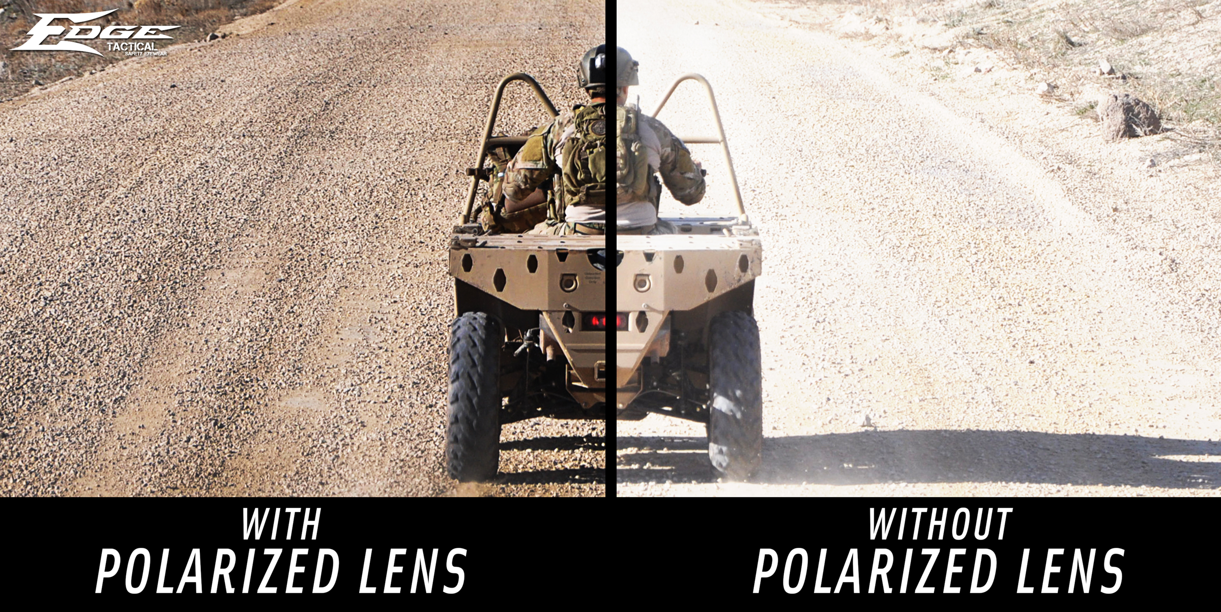 polarizedgraphic1.jpg