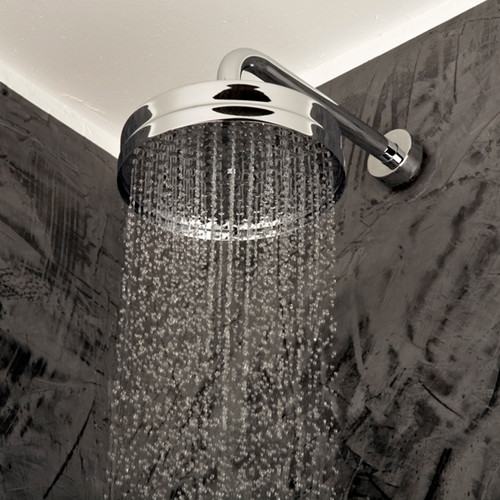 382 Cigno Shower Head