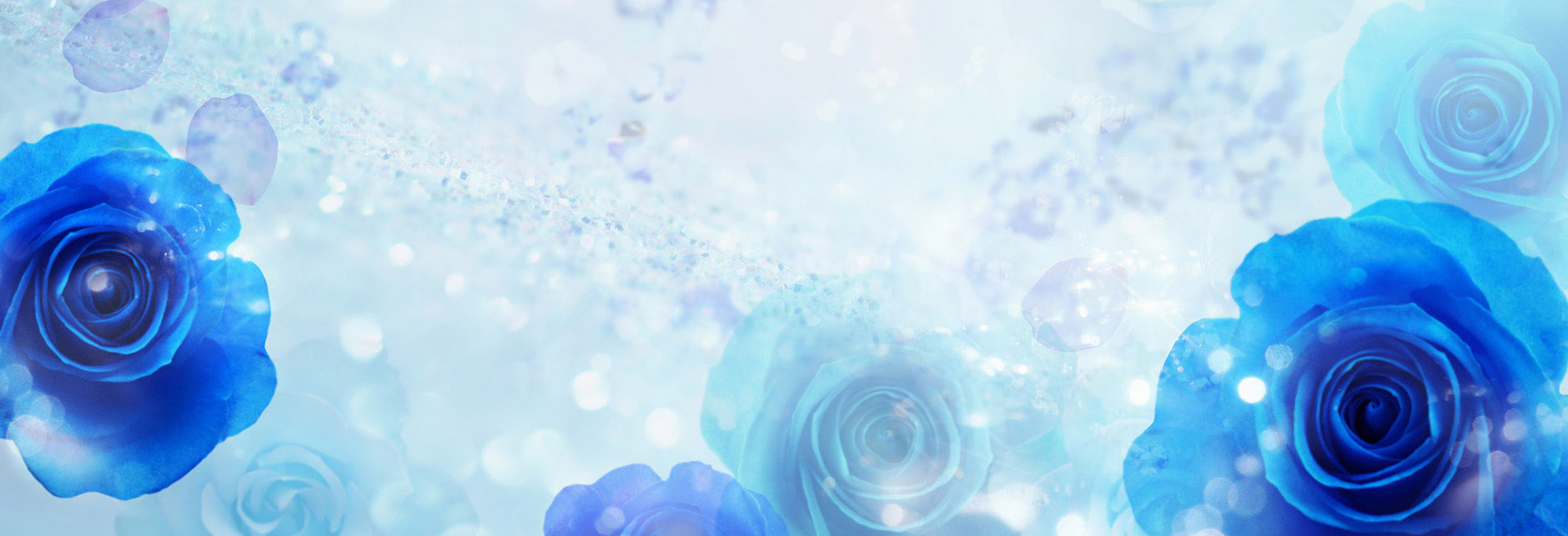 204279-blue-flower-background.jpg