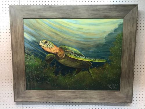 Turtle - Steele Creek