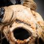 Scary Devil Horns Animal Skull Ghost Skull Masquerade Mask