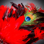 Venetian Glitter Crystal Mardi Gras Mask with Peacock Large Feather - Silver Red
