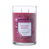 Holiday Sparkle 11 oz. Classic Cylinder Jar Colonial Candle