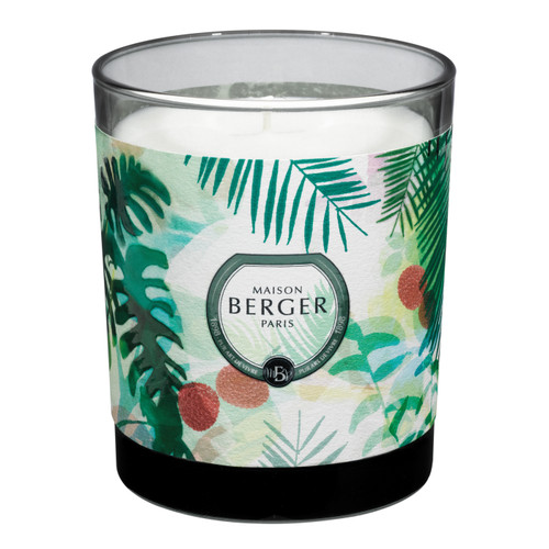 Immersion Grey Candle in Lychee Paradise 240g - Maison Berger by Lampe Berger