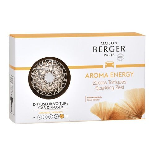 Aroma Energy - Nickel Matte Finish Car Diffuser Kit - Maison Berger by Lampe Berger