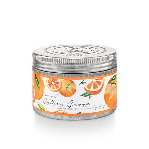 Citrus Grove 4.1 oz. Small Tin Candle by Tried & True