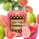 Guava Party Punch  26 oz. Large Jar by Candleberry Candle