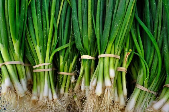 Green Onion (per bunch)