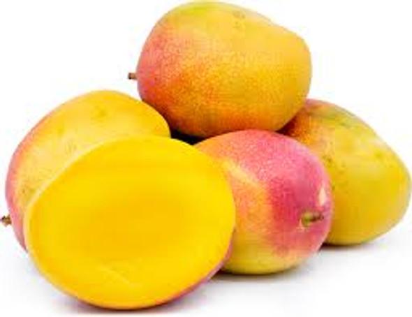 Haden Mangoes (ea)