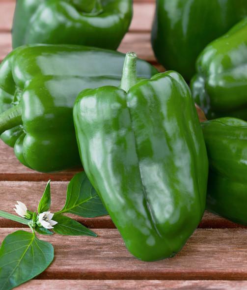 Green Bell Pepper (per lb)