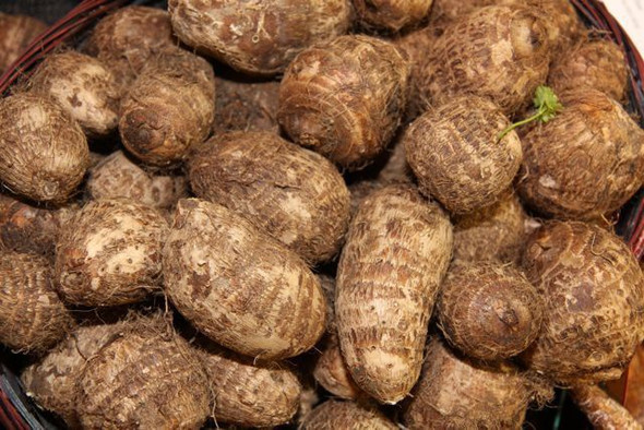 Taro Root (per lb)