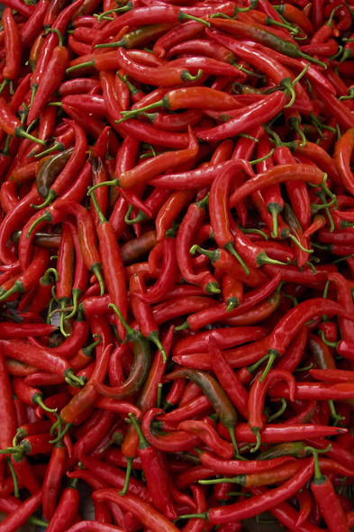 Thai Red Chilly (per lb)