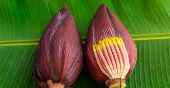 Banana Flower (ea)