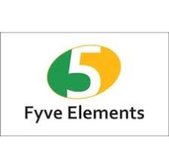 Fyve Elements Ragi Flour 2lb