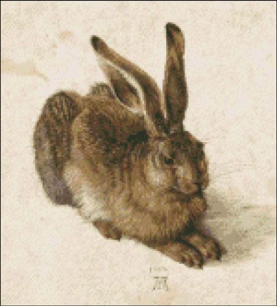 A Young Hare