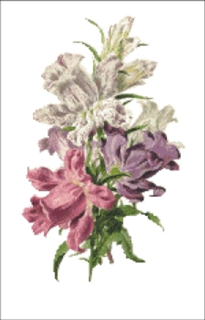 Campunula Flower Cross Stitch Pattern