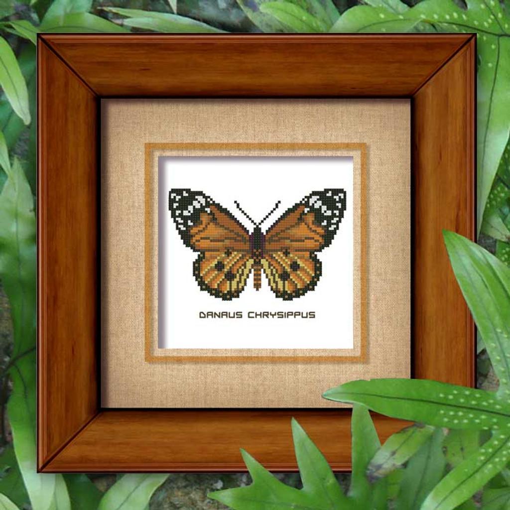 Butterfly Pattern 804