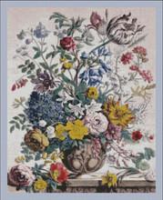 Twelve Months of Flowers - 005 May