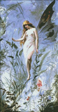 Lilly Fairy