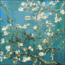 Almond Branch in Blossom