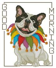 Bull Dog Good Morning