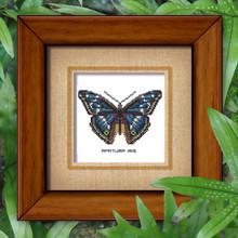 Butterfly Pattern 802