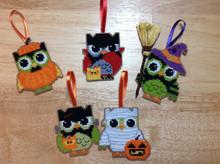 Hootie Owl-loween (Halloween)