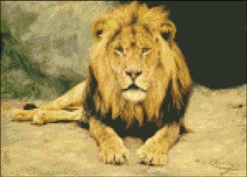 Lion Majestic