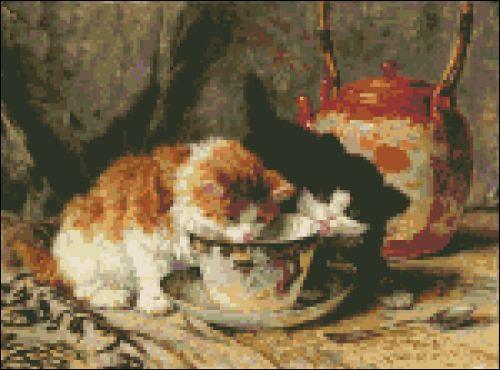 Kittens High Tea