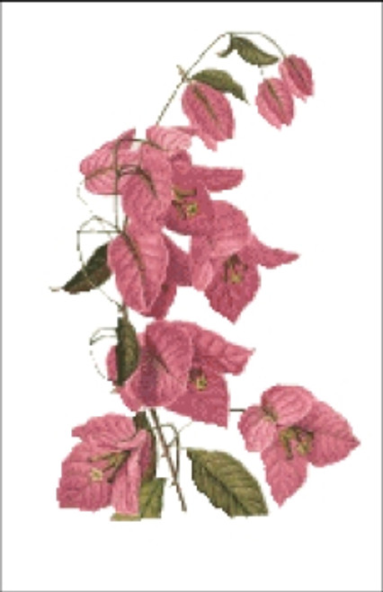 Bouganvilla Cross Stitch Pattern