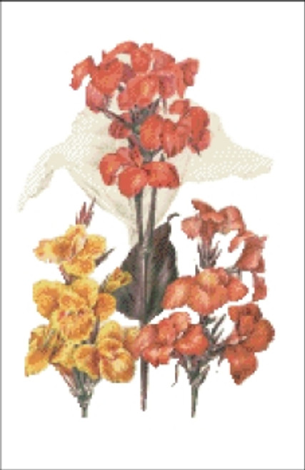 Canna Italian Flower Cross Stitch Pattern