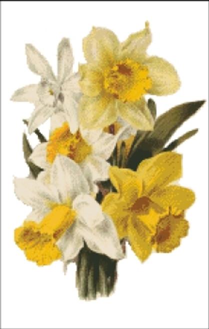 Daffodil Flower Cross Stitch Pattern
