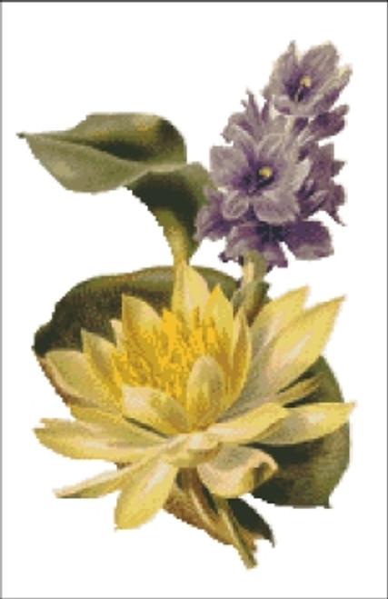 Odorata Sulphurea Flower Cross Stitch Pattern