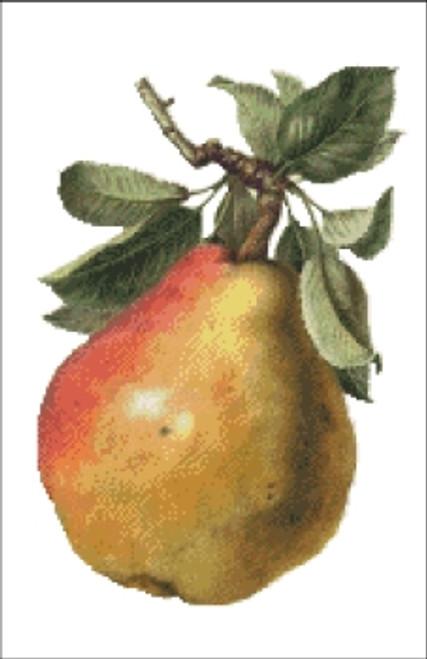 Pear Fruit Cross Stitch Pattern