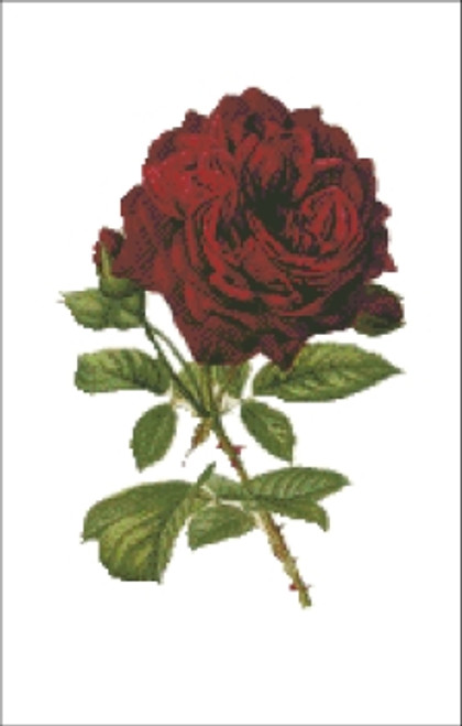 Red Rose Cross Stitch Pattern