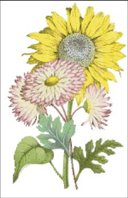 Sunflower with Marigold