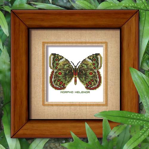 Butterfly Pattern 807