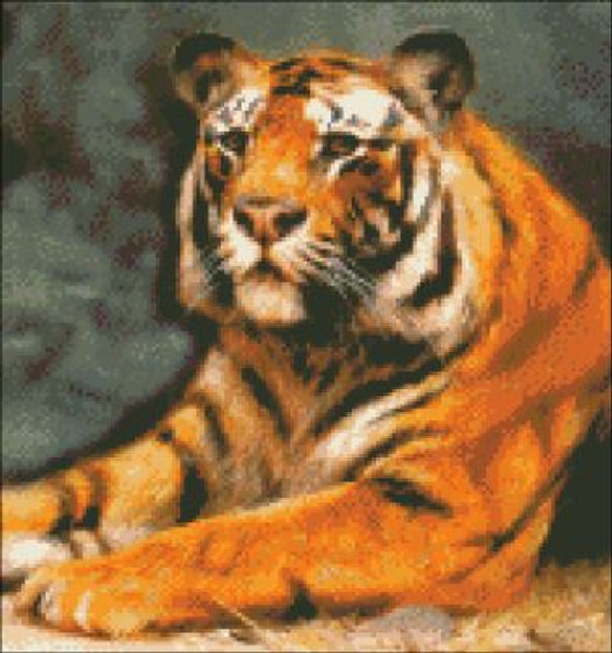 Tiger at Rest (Detail)