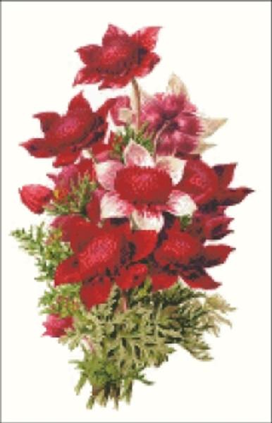 Anemone Flower Cross Stitch Pattern