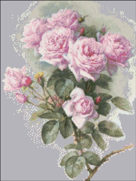 Pink Roses and Bumblebees